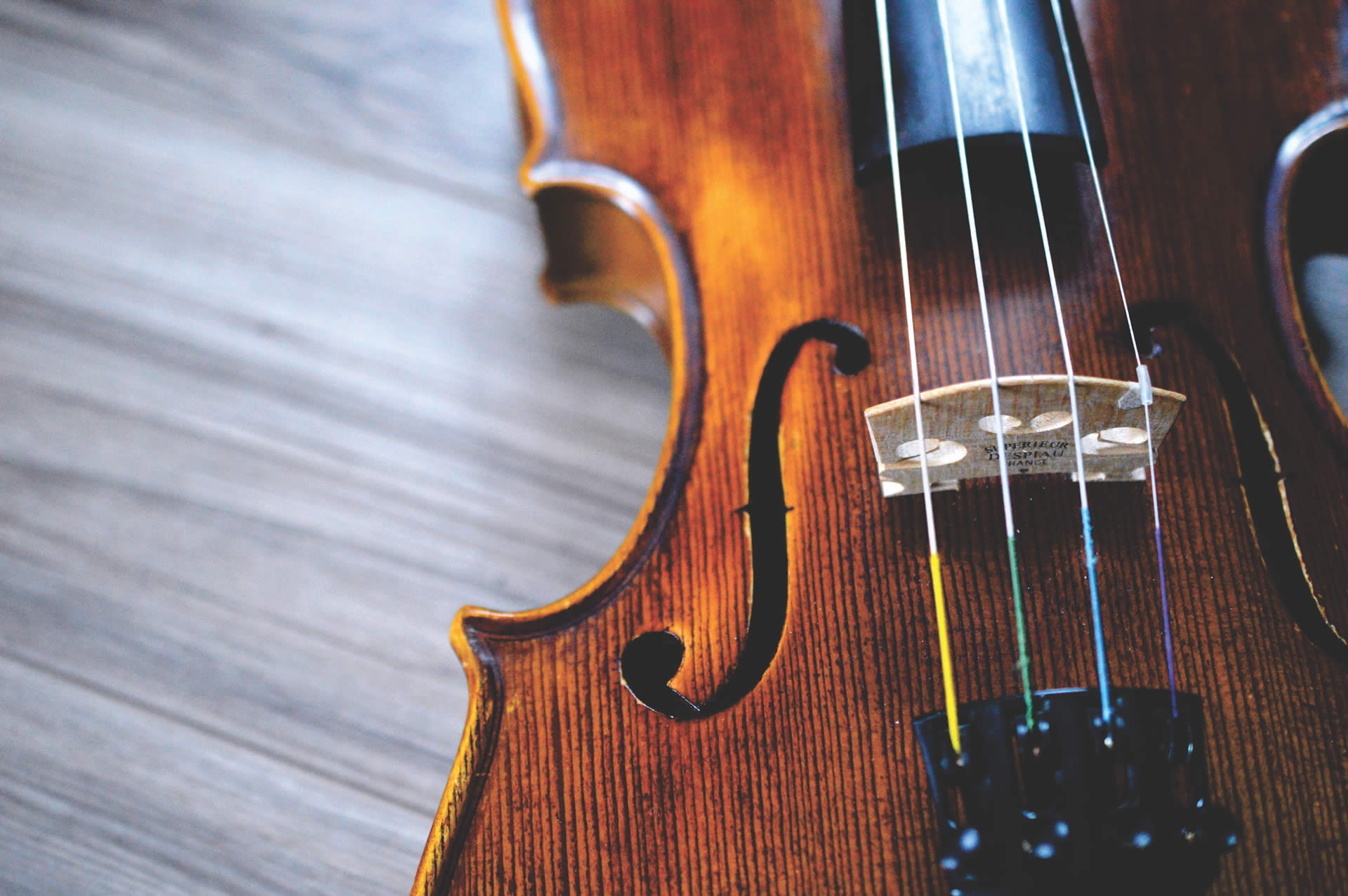 Close up on a violin